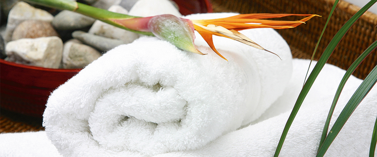Handtuch mit Steinen und Paradiesvogelblume