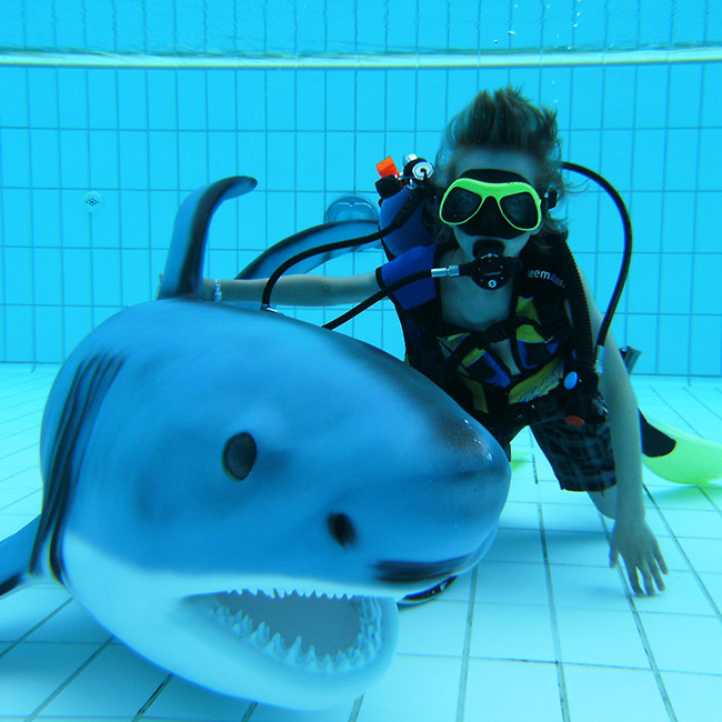 jugendhaiforscher